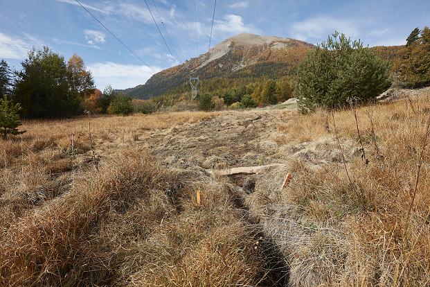 Zone humide bas marais alcalin