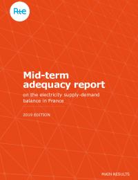 2019_generation_adequacy_report.pdf thumbnail