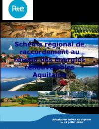 Adaptation S3REnR Aquitaine N°1 (2020).pdf thumbnail