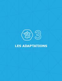 SDDR 2019 Chapitre 03 - Les adaptations.pdf thumbnail
