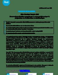 CP_RTE_BilanElectrique_2020.pdf thumbnail
