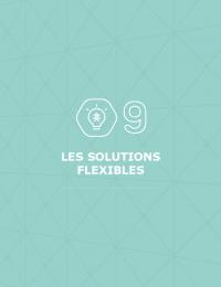 SDDR 2019 Chapitre 09 - Les solutions flexibles.pdf thumbnail