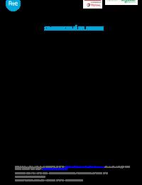 CP_Ringo_Bellac_RTE_Saft_Schneider-pdf.pdf thumbnail