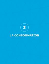 BP2050_rapport-complet_chapitre3_consommation_0.pdf thumbnail