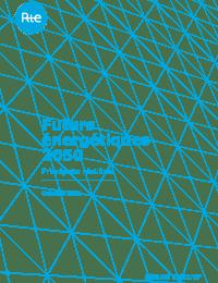 Futurs-Energetiques-2050-principaux-resultats_0.pdf thumbnail