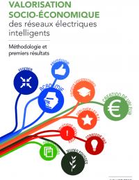 Reseaux electriques intelligents - rapport 2015.pdf thumbnail