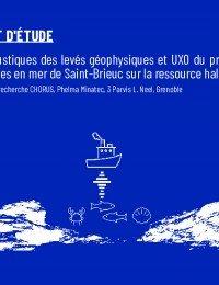 rapport-etude_chorus-juin2020.pdf thumbnail