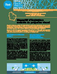 Avelin - Gavrelle - Plaquette préjudice visuel.pdf thumbnail