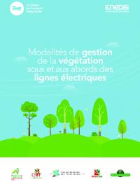 Guide pratique - Végétation sous et aux abords des lignes électriques.pdf thumbnail