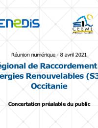 S3REnR_Occitanie_Presentation_Reunion_ouverture_8 avril 2021.pdf thumbnail