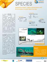 FEM_Plaquette projet SPECIES.pdf thumbnail
