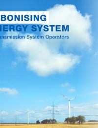 Role of TSOs.pdf thumbnail